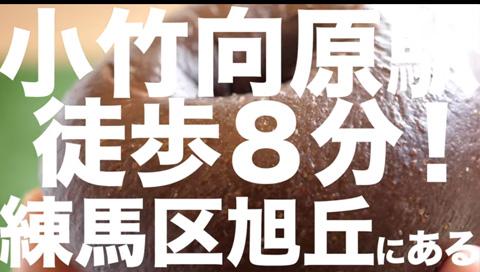小竹向原駅徒歩8分